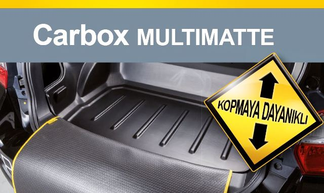 AutON_Carbox10