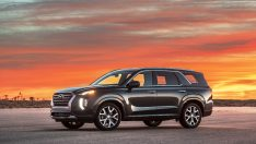Hyundai'den dev SUV